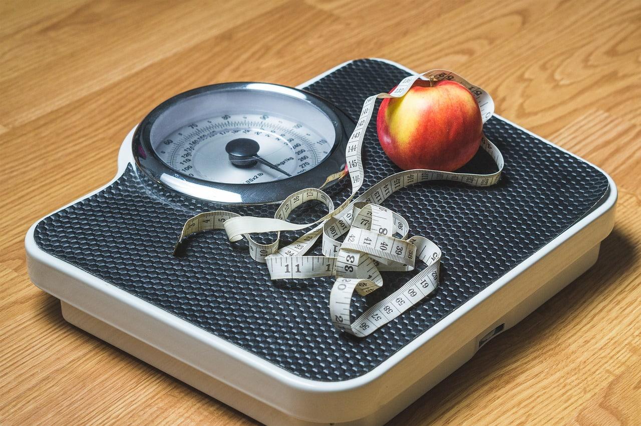 obezite bilgi notu